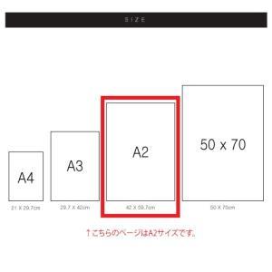 ポスター インテリア アートポスター 植物 おしゃれ フォトポスター サンサンフー リーフコレクション A2(フレームなし ) sangsanghoo-jp 05