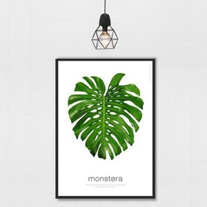 ポスター インテリア アートポスター 植物 おしゃれ フォトポスター サンサンフー リーフコレクション A2(フレームなし ) sangsanghoo-jp 08