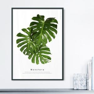 ポスター インテリア アートポスター 植物 おしゃれ フォトポスター サンサンフー リーフコレクション A2(フレームなし ) sangsanghoo-jp 09