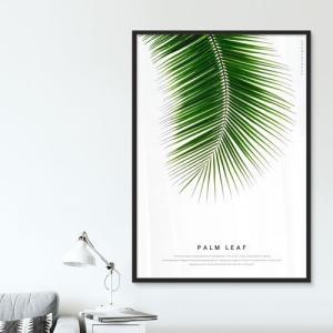 ポスター インテリア アートポスター 植物 おしゃれ フォトポスター サンサンフー リーフコレクション A2(フレームなし ) sangsanghoo-jp 10