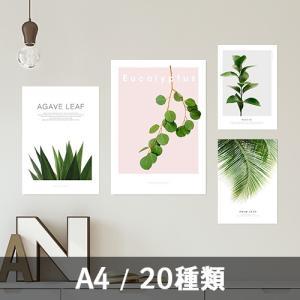ポスター インテリア アートポスター A4 植物 おしゃれ フォトポスター サンサンフー リーフコレクション A4(フレームなし )|sangsanghoo-jp