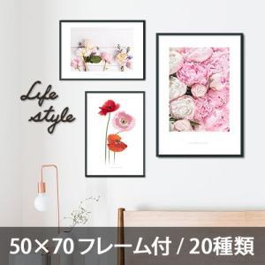 ポスター インテリア アートポスター お花 植物 おしゃれ  フォトポスター サンサンフー フラワーコレクション 50×70(フレーム付 )|sangsanghoo-jp