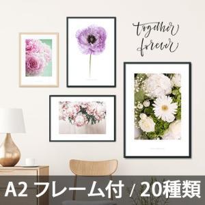 ポスター インテリア アートポスター  A2 お花 植物 おしゃれ  フォトポスター サンサンフー フラワーコレクション A2(フレーム付 )|sangsanghoo-jp