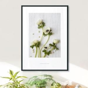 ポスター インテリア アートポスター  A2 お花 植物 おしゃれ  フォトポスター サンサンフー フラワーコレクション A2(フレーム付 )|sangsanghoo-jp|03