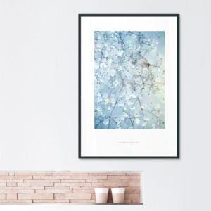 ポスター インテリア アートポスター  A2 お花 植物 おしゃれ  フォトポスター サンサンフー フラワーコレクション A2(フレーム付 )|sangsanghoo-jp|05