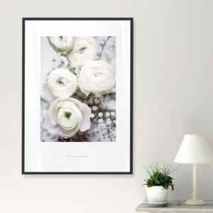 ポスター インテリア アートポスター  A2 お花 植物 おしゃれ  フォトポスター サンサンフー フラワーコレクション A2(フレーム付 )|sangsanghoo-jp|07