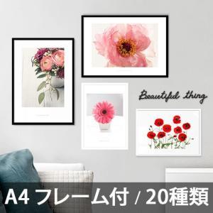 ポスター インテリア アートポスター  A4 お花 植物 おしゃれ  フォトポスター サンサンフー フラワーコレクション A4(フレーム付 )|sangsanghoo-jp