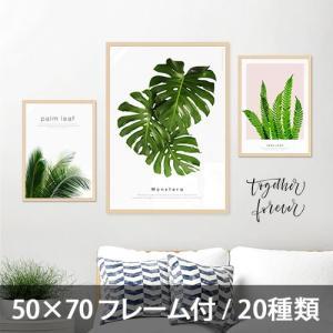 ポスター インテリア アートポスター 植物 おしゃれ フォトポスター サンサンフー リーフコレクション 50×70(フレーム付 )|sangsanghoo-jp