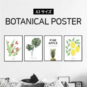 ポスター インテリア A3 ボタニカル 植物 おしゃれ アートポスター アートプリント アートフレー...