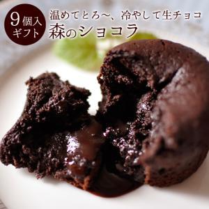 父の日 ギフト・贈り物にも。チョコレート「森のショコラ9個入...