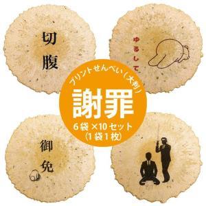大判プリントせんべい 《お詫び》 6袋(1袋1枚)|sankaian
