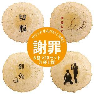 大判プリントせんべい 《お詫び》 6袋×10セット(1袋1枚)|sankaian