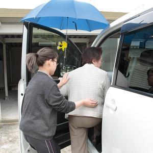 車用傘ホルダー サル 動物柄 雨よけ 両手が使える サンコー|sanko-online