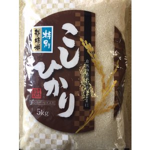 28年産  コシヒカリ白米10kg        特別栽培米 送料無料