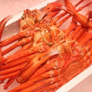 近海産 紅ズワイガニ《訳あり2〜5匹》(ベニズワイガニ) ボイル1.3kg以上[送料無料]|sankousuisan