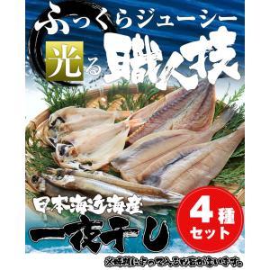 日本海産一夜干しセット(送料無料)|sankousuisan