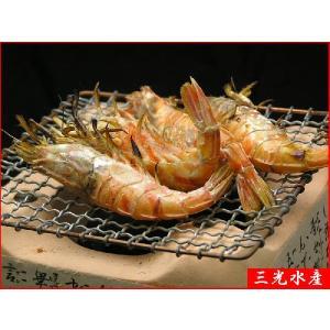 日本海の美味 近海産モサ海老300g(20匹前後) |sankousuisan|05