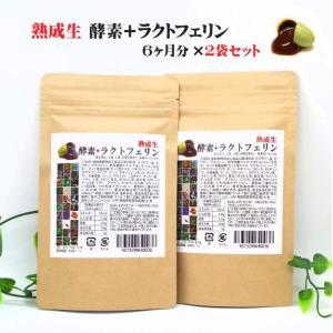 熟成生 酵素+ラクトフェリン 【お得な 2袋セット】 合計360粒|sankyo-sapuri|02