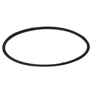 ファイテン(phiten) ネックレス RAKUWA 磁気チタンネックレスS ブラック 55cm 送料無料|sanosyoten