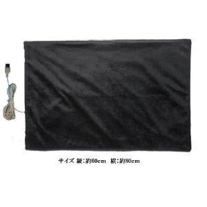 あったかグッズ電気ひざ掛け毛布 USBブランケット ブラック sanpouyosi-store
