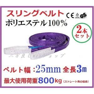 2本セット スリングベルト ベルト幅25mm 全長3m/ポリエステル強力原糸100% ナイロンスリングベルトスリング|sanpouyosi-store