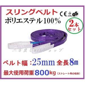 2本セット スリングベルト ベルト幅 25mm全長 8m /耐久性に優れているポリエステル強力原糸100% ナイロンスリング ベルトスリング 繊維ベルト|sanpouyosi-store