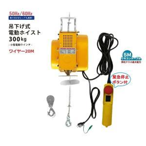 吊下げ式電動ホイスト300kg ワイヤー20M 小型電動ウインチ 吊り下げタイプ 移動式  三方良し 電動ウインチ 強力ウィンチ  小型ホイスト 送料無料!|sanpouyosi-store