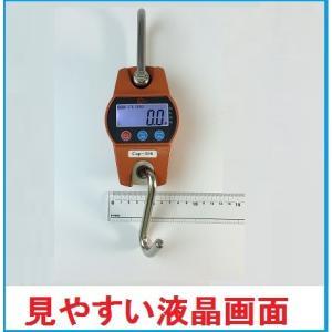 【あす楽対応】WCPクレーンスケール 100kg 超コンパクトデジタル吊りはかり 乾電池式【三方良し...