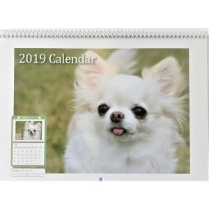 カレンダー 2019 年 可愛い 犬 の カレンダー 壁掛けカレンダー 送料無料