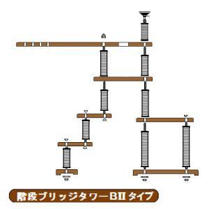 階段ブリッジタワーBIIタイプへ sansei