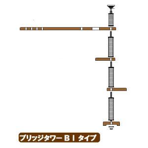 ブリッジタワーBIタイプへ sansei