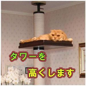 2m70cmまでの天井に最適サイズにします|sansei