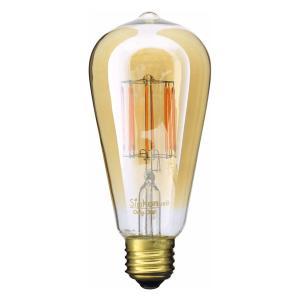 ビートソニック フィラメント LED 電球 「Siphon エジソン」 LDF30A|santelabo|02