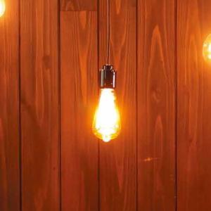 ビートソニック フィラメント LED 電球 「Siphon エジソン」 LDF30A|santelabo|04
