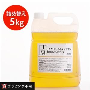 ジェームズマーティン 薬用泡ハンドソープ 詰め替え用 5kg(james martin 薬用ハンドソープ 除菌 殺菌 消毒 詰替え 泡タイプ 保湿)|santelabo