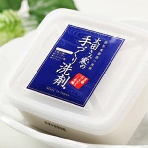 太田さん家の手づくり洗剤 700g 京都はんなり本舗 化粧成分配合|santelabo