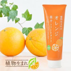 石澤研究所 植物生まれの果汁トリートメント 250g 植物生まれのオレンジトリートメント (ヘアケア スカルプケア トリートメント)|santelabo