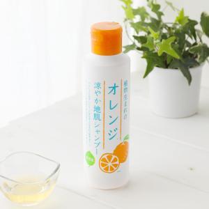 石澤研究所 植物生まれのオレンジ涼やか地肌シャンプー 250ml|santelabo