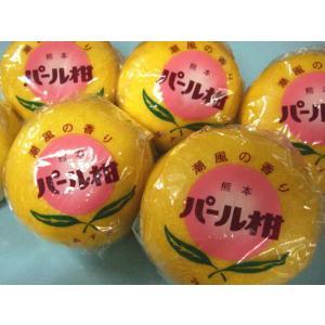 【送料無料】熊本名産 パール柑8〜12玉入(約5kg)パールかん|santyoku-furusato