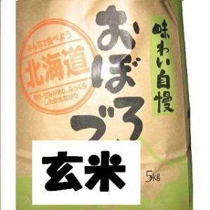 元年産おぼろづき玄米 5kg