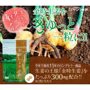 【初回限定】金時しょうが粒 (30粒) 15日分 金時 しょうが 生姜 冷え サプリ  温める ヒアルロン酸|sanwa-y