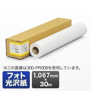 プロッター用紙 プリンタ 大判 ロール紙 フォト光沢紙 1067mm×30m エプソン&キヤノン&HP対応(取寄せ)|sanwadirect