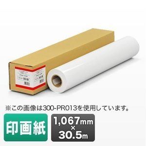 プロッター用紙 プリンタ 大判 ロール紙 印画紙 1067mm×30.5m エプソン&キヤノン&HP対応(取寄せ)|sanwadirect