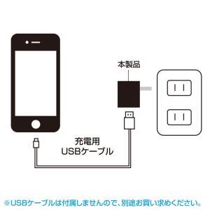 USB充電器 1ポート 1A 小型 ホワイト(ACA-IP32WN)(即納)|sanwadirect|07