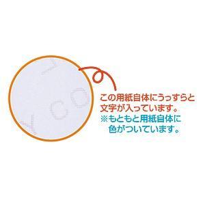 コピー偽造防止用紙 B5 100シート(JP-MTCBB5)(即納) sanwadirect 03