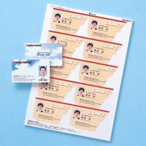 名刺カード カラーレーザー用 つやなし マット 10シート(LBP-MMC10N)(即納)|sanwadirect
