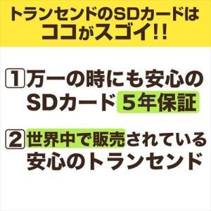 SDカード 64GB SDXC カード Class10 UHS-I Ultimate(即納)|sanwadirect|06