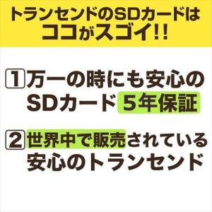 SDカード 8GB SDHCカード class10(即納)|sanwadirect|09