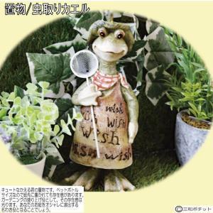 カエル かえる 蛙 ガーデニング 置物 インテリア おしゃれ ギフト お買得 格安 条件付き送料無料  縁起物  縁起物|sanwapotitto