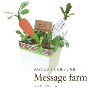 メール便可・メッセージファーム(色紙 寄せ書き)|sanyodo-shop
